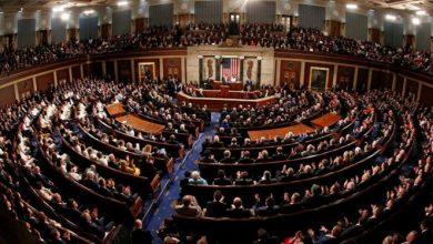 صورة من هي اللبنانية التي خسرت مقعدها في الكونغرس الأميركي؟
