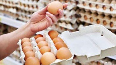 """صورة لبنانيون يدعون لـ """"أسبوع مقاطعة البيض والدجاج"""": """"خلوها تفقس""""!"""