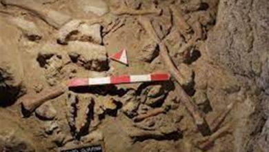 صورة تعود إلى ما بين 50 ومئة ألف عام…علماء آثار يكتشفون رفات تسعة من الإنسان البدائي بكهوف قرب روما